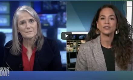 Netanyahu's Proposed West Bank Annexation: Jadaliyya Co-Editor Noura Erakat on Democracy Now!