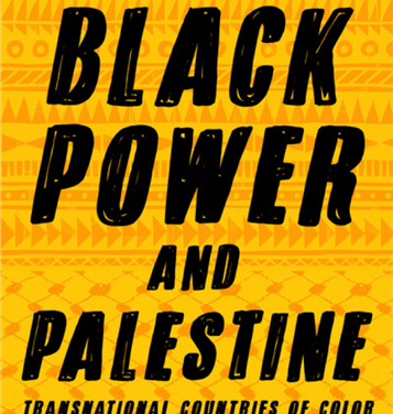 NEWTON: Black Power and Palestine